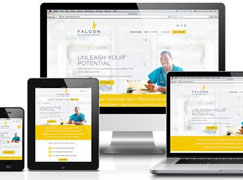 A Good Website Design can Increase the Visitors Turning into Buyers at you Product Homepage