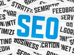 Have you Checked if your Website is SEO Optimized?